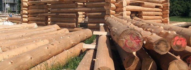 Древесина, как строительный материал
