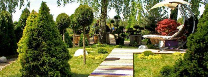 Роль цвета в ландшафтном дизайне. Цветовое оформление