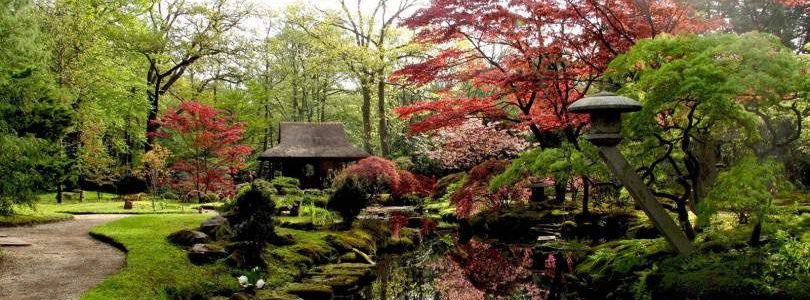 Японский стиль ландшафтного дизайна