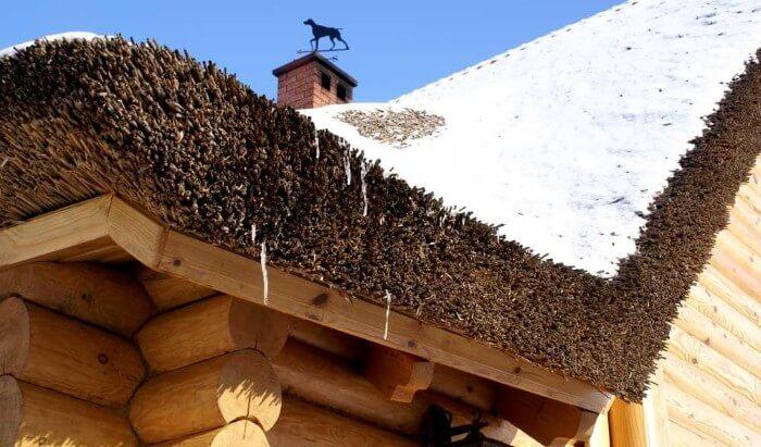 Крыша из камыша на деревяном доме