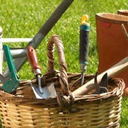 Первые весенние работы в саду